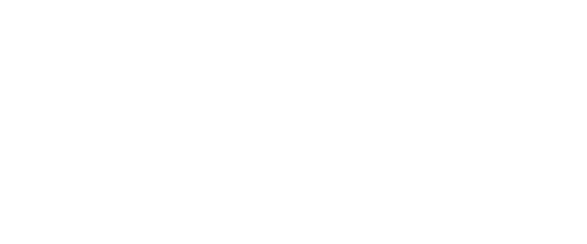 Qatar Airways Intranet Logo